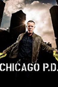 Chicago P.D. Season 05 Full Episodes Online Free