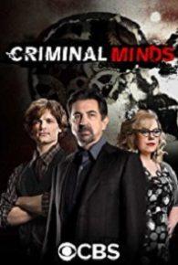 Criminal Minds Season 13 Full Episodes Online Free