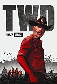 Watch The Walking Dead Season 09 Full Episodes Online Free