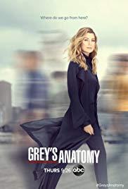 Watch Grey's Anatomy Season 16 Online Free